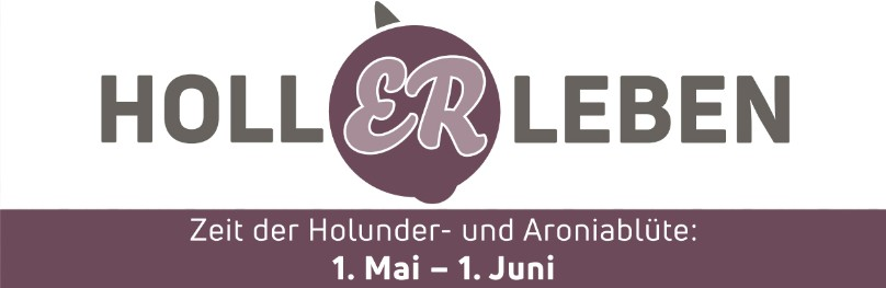 flagship products hollerleben logo